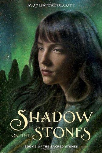 Download Shadow on the stones
