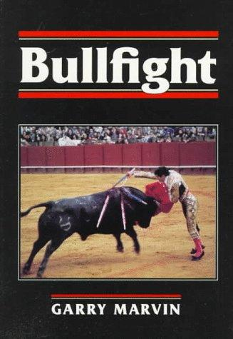 Download Bullfight