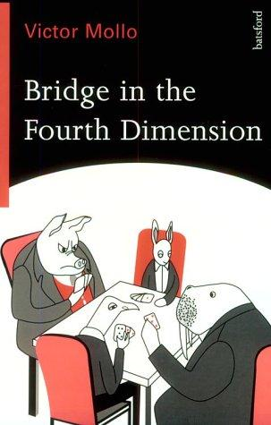 Download Bridge In The Fourth Dimension