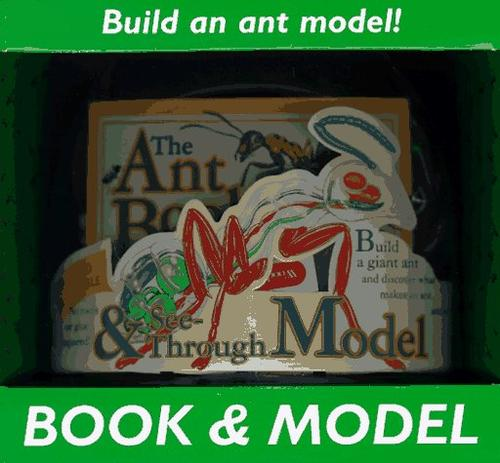 The ant book by Luann Colombo