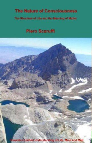 The Nature of Consciousness by Piero Scaruffi