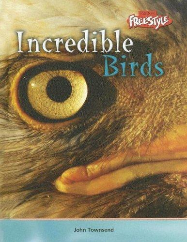Incredible Birds (Incredible Creatures) by