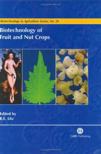 Biotechnology of Fruit and Nut Crops (Biotechnology in Agriculture Series) by Richard E. Litz