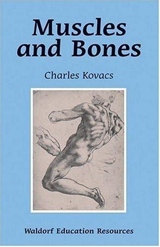 Muscles And Bones (Waldorf Education Resources) by Charles Kovachs